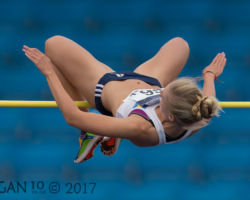 Lynda Chamberlin on High Jump by Ed Roper