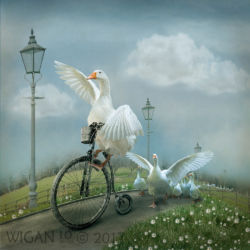 A Wild Goose Chase by Lynne Morris