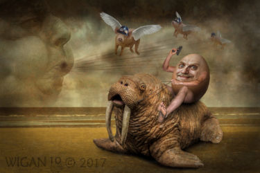 I am the Walrus by Lynne Morris